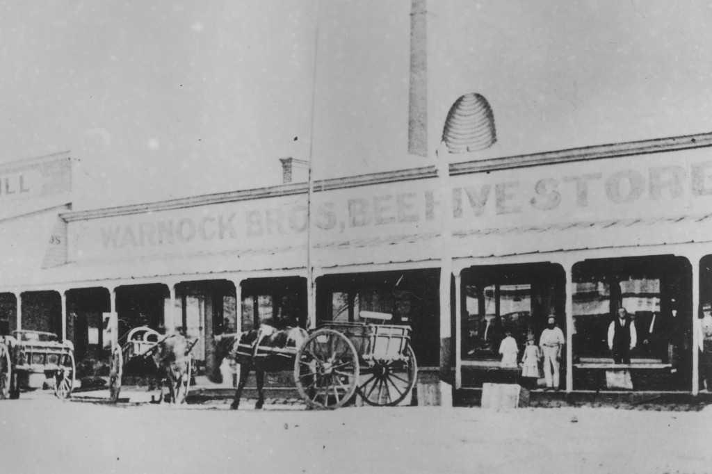 Warnock's Beehive Store, c1858